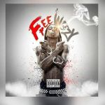 600_1423855169_lil_wayne_releases_the_free_weezy_album_stream_500x500_61